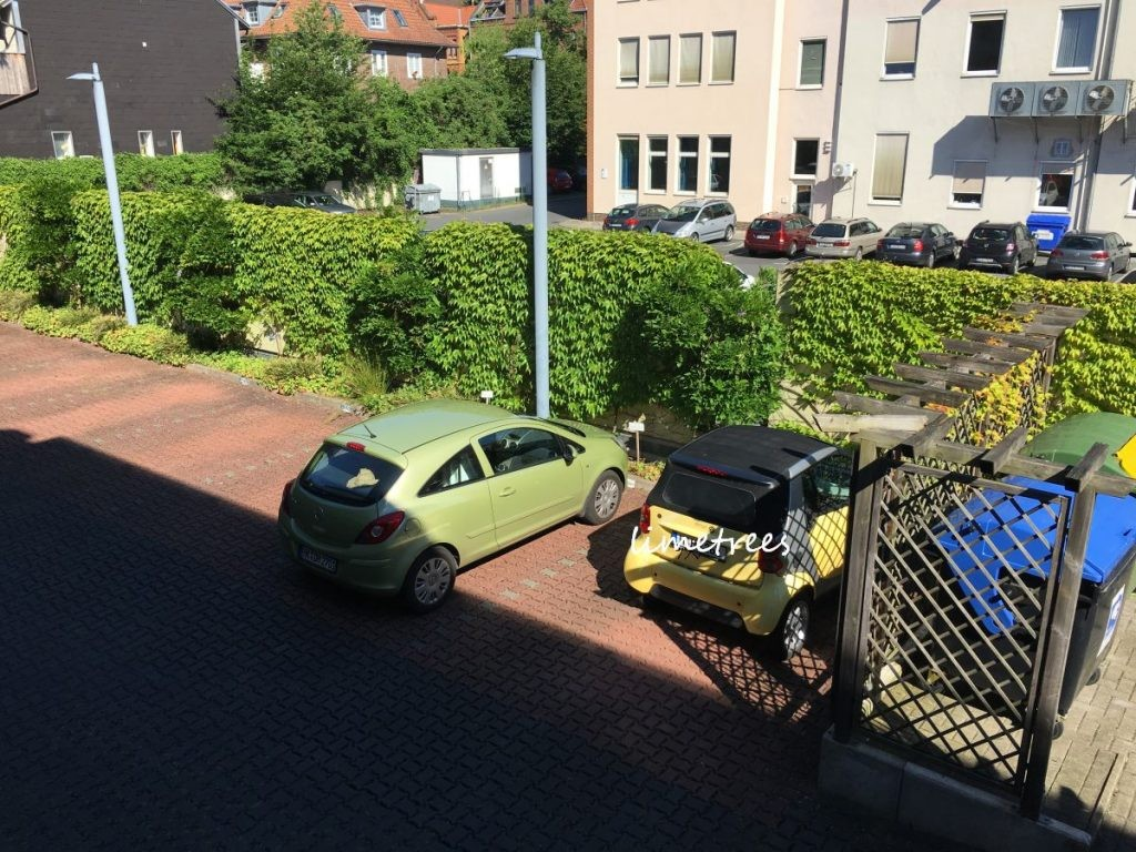 limetrees hat kundenparkplätze