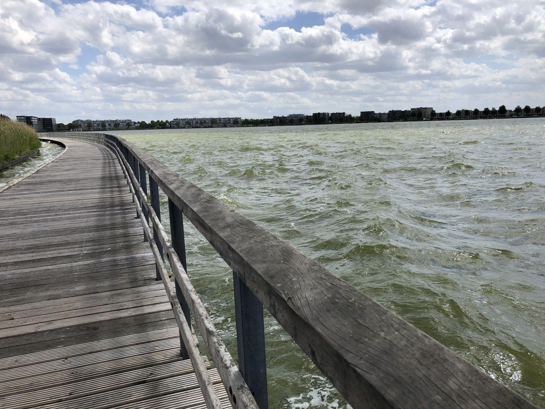 Spazieren am Wasser