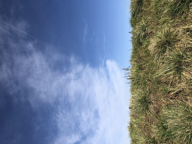 Blauer Himmel überm Deich