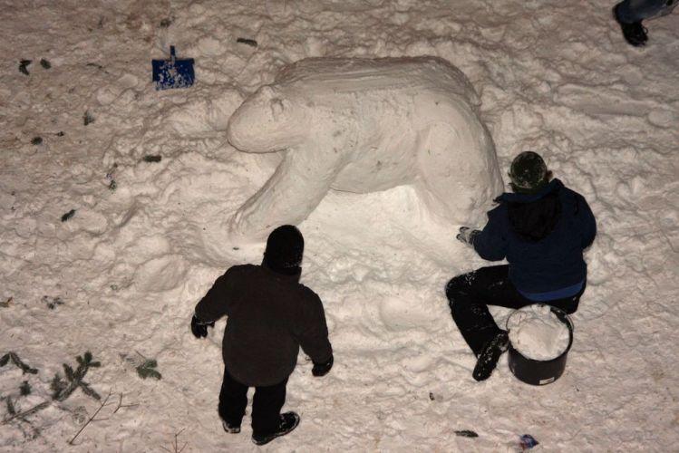 Eisbär im Bau