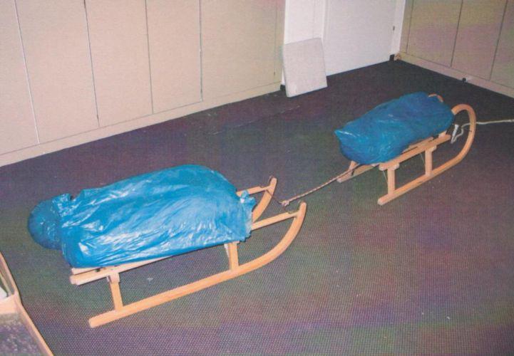 So oder so ähnlich sahen die gezogenen Schlitten aus