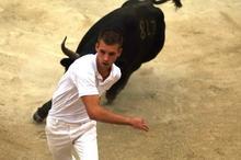 Stierkampf in der Camargue