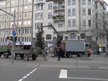 Weihnachtsbaum am Schwarzen Bär