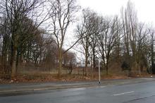 Lagerfläche beim Schulgarten