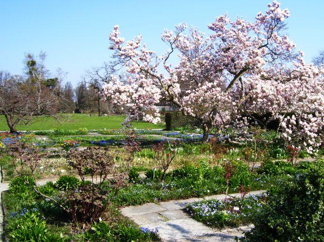 Berggarten im Frühjahr