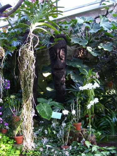 Orchideenhaus