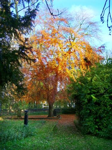 Bergfriedhof im Herbst