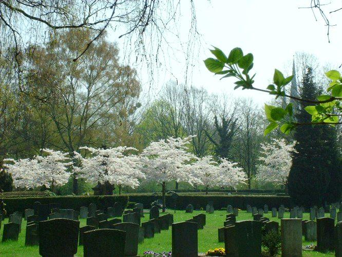 Fössefeldfriedhof