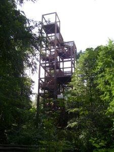 Wald-Hochhaus