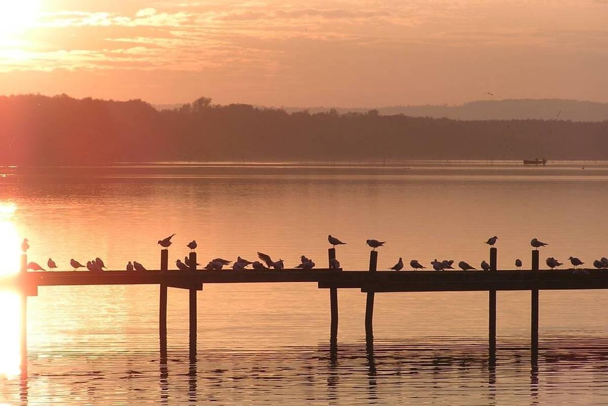 Abendstimmung am Steinhuder Meer (Foto: Florian Toffel)