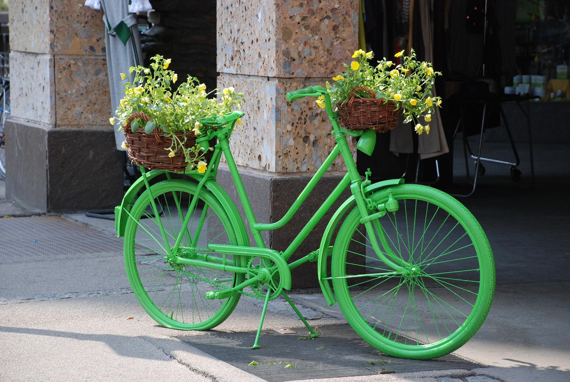 Die grüne Lösung für bessere Luft