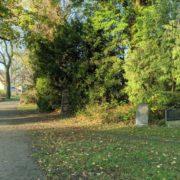 Grabsteine auf dem Friedhof Seelberg