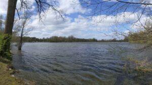 Badestelle am Ricklinger Teich