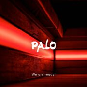 Palo Palo - We are Ready
